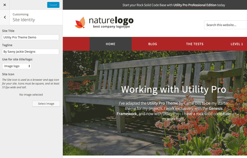 Site Title using image on Utility Pro